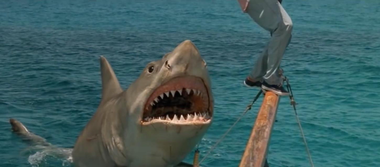 The 5 Best Worst Jaws Rip-Offs