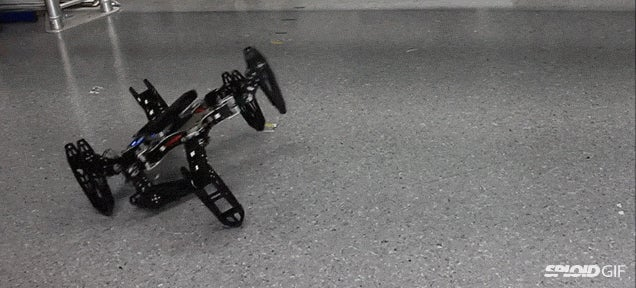 Video: Injured robots can now adapt and learn how to walk with a limp