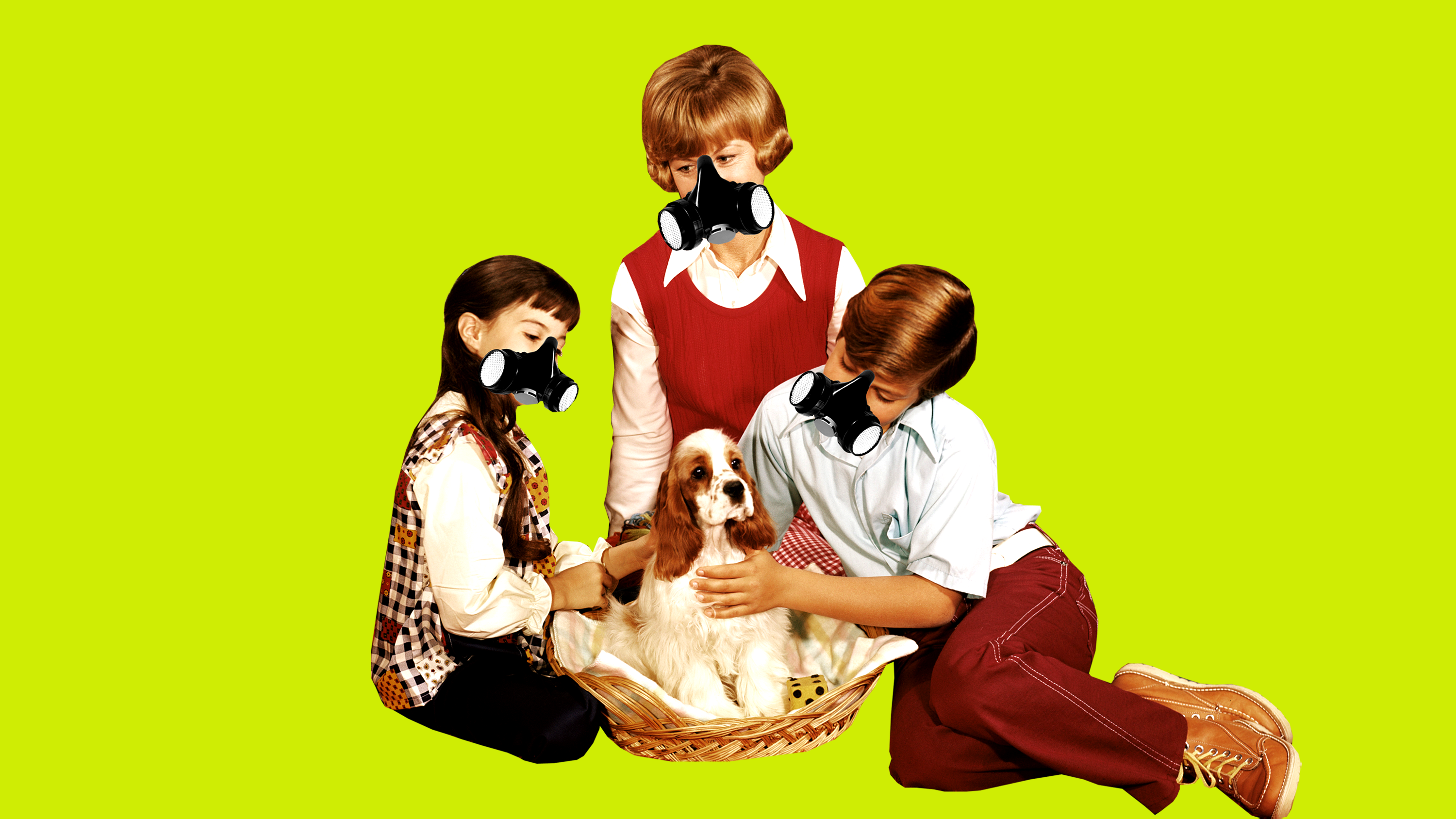 How Much Do I Have To Worry About My Dog's Germs?