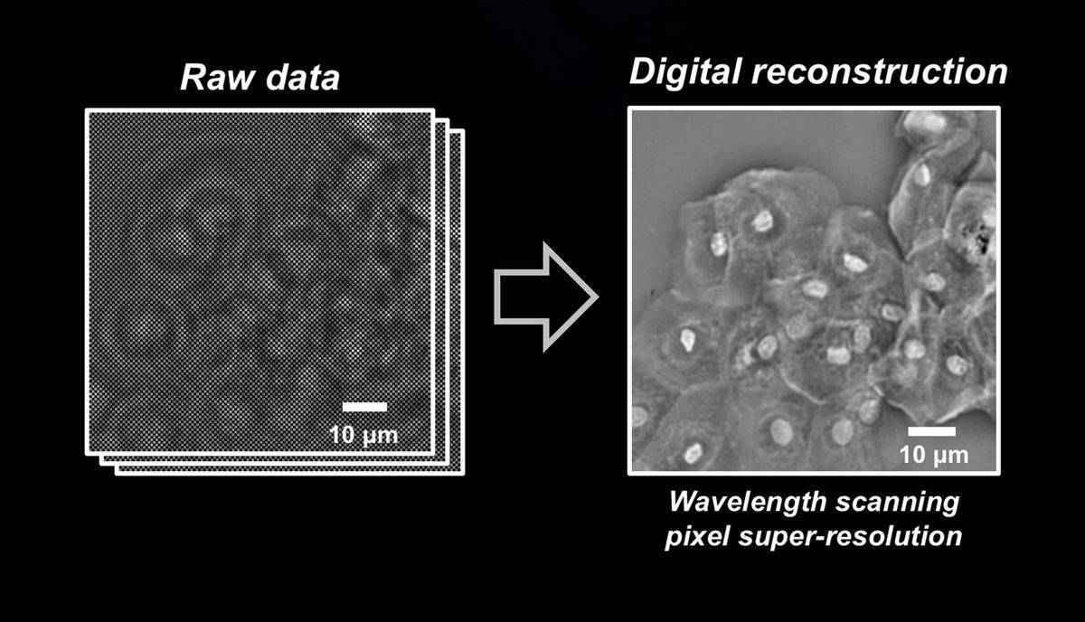A New Sensor Turns Old Microscopes Into Super-Resolution Devices