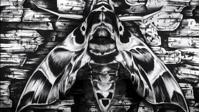 There's a woman hidden in this painting of a moth