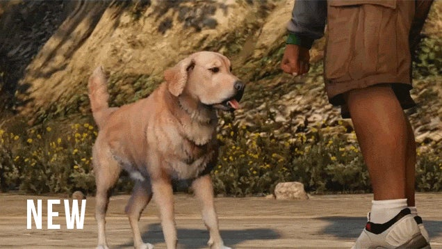 New-Gen GTA V Dog Is Looking Good