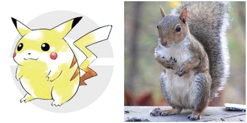 Pikachu Wasn't Based On A Mouse, But A Squirrel