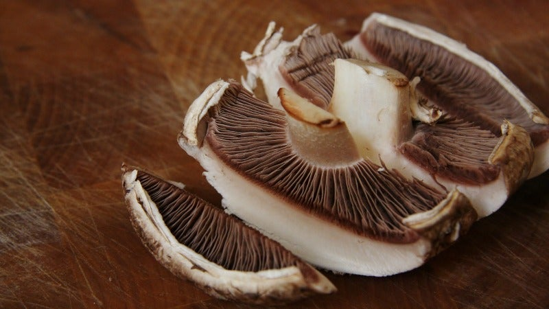Make Mushroom 'Jerky' For an Umami-Packed Snack Anyone Can Enjoy