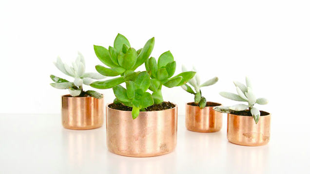 Turn Copper Pipes and Cap Fittings into Decorative Planters
