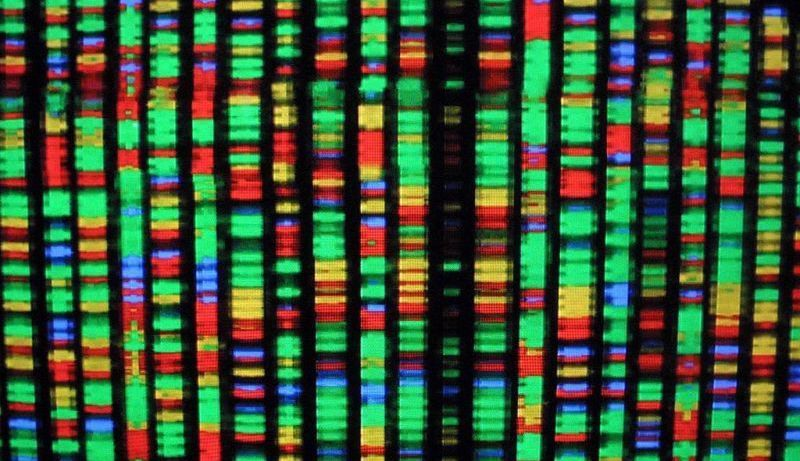 This Study Is Forcing Scientists To Rethink The Human Genome