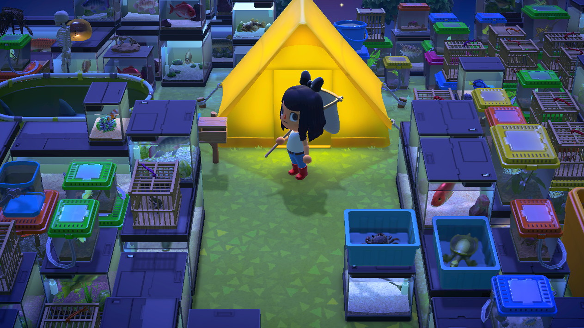 Animal Crossing Players Are Cluttering Their Islands With So Many Cages And Crates