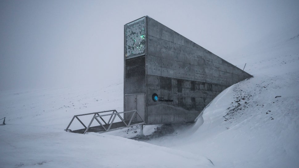 Scientists Add 50,000 Seeds To Arctic Doomsday Vault Because Everything Is Awful