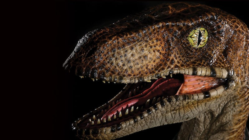 Put This $1600 Jurassic Park Velociraptor Head In Your Front Hall To Greet, Terrify Guests