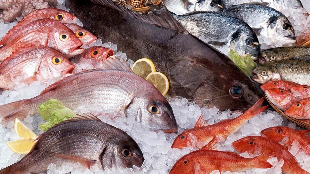 How to buy prepare and enjoy raw fish lifehacker australia for Fish to buy