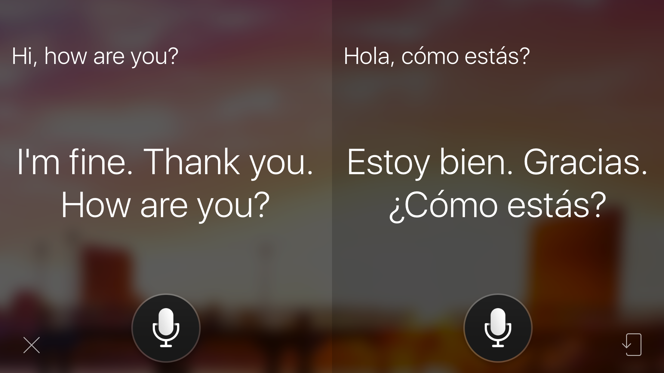 Translation Tool Showdown: Google Translate Vs  Microsoft