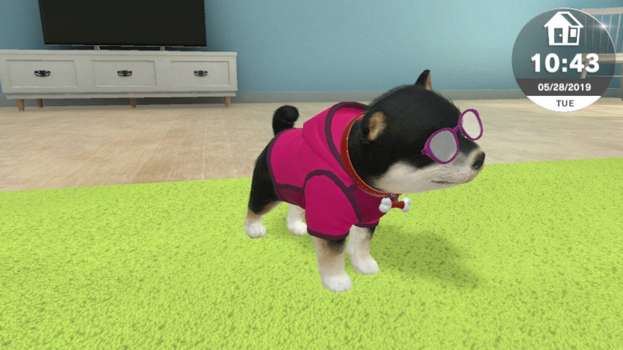 New Pet Sim For Switch Is No Nintendogs But It's Still Better Than My Real Dog