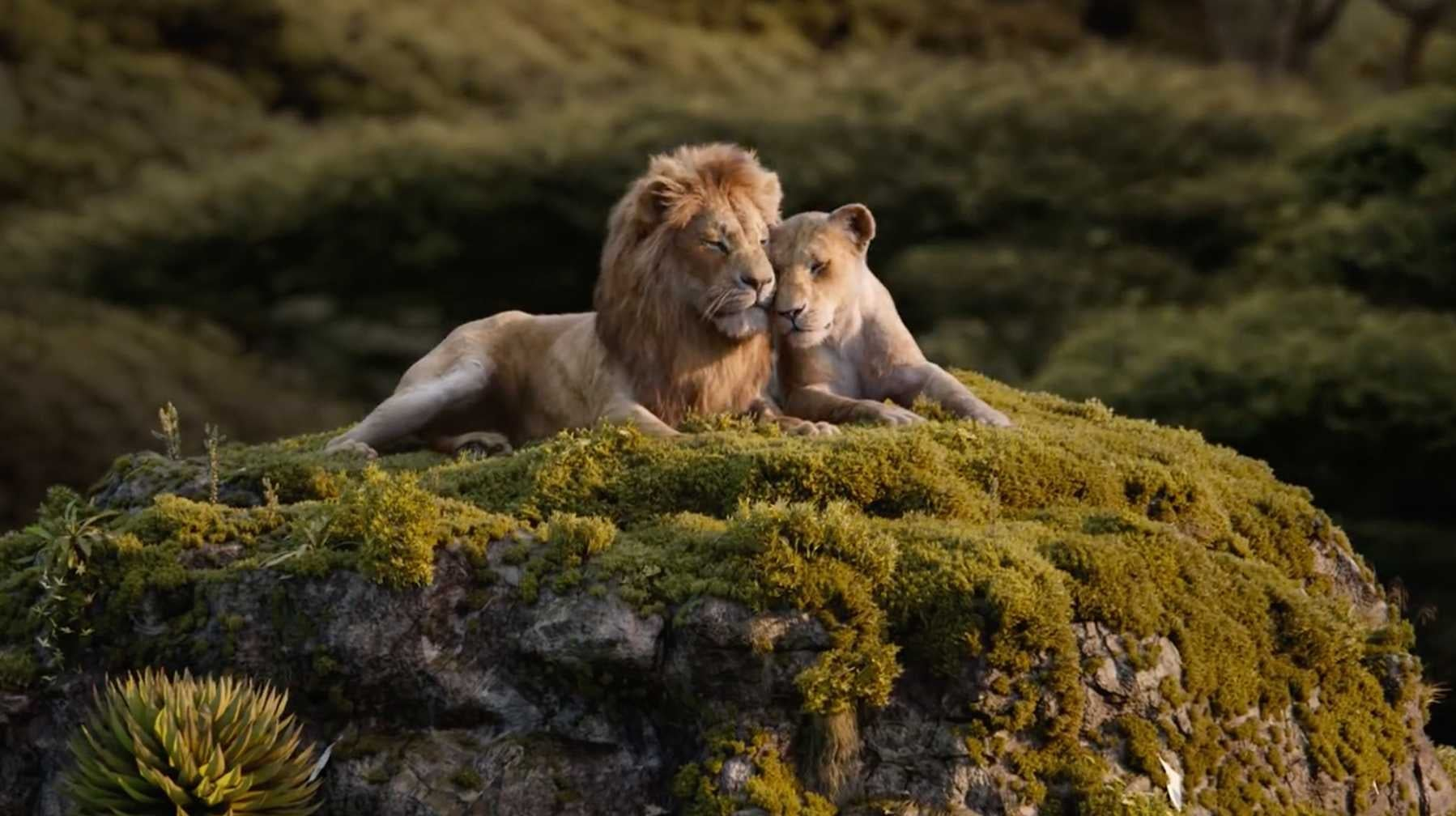 Jon Favreau's The Lion King Had One Shot In It That Wasn't CGI