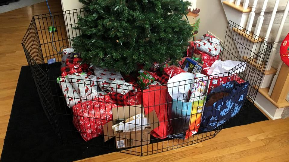 Use A Pet Fence To Keep Your Christmas Presents Safe From The Animals