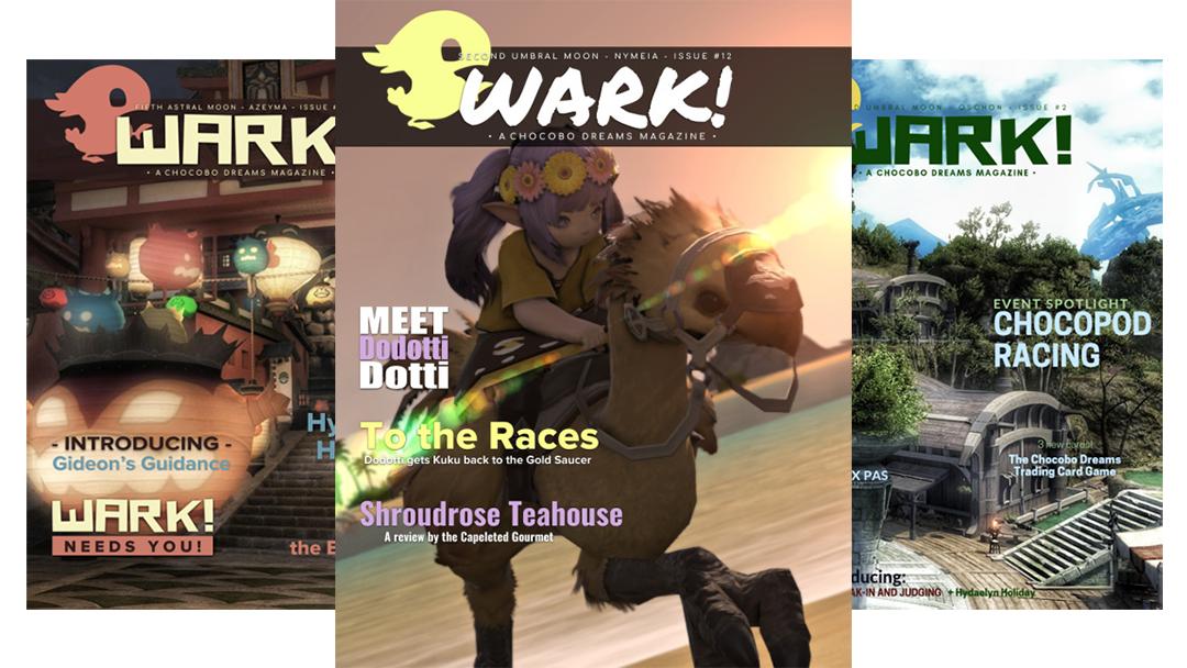 Roleplayers Create Elaborate Magazine In Final Fantasy 14