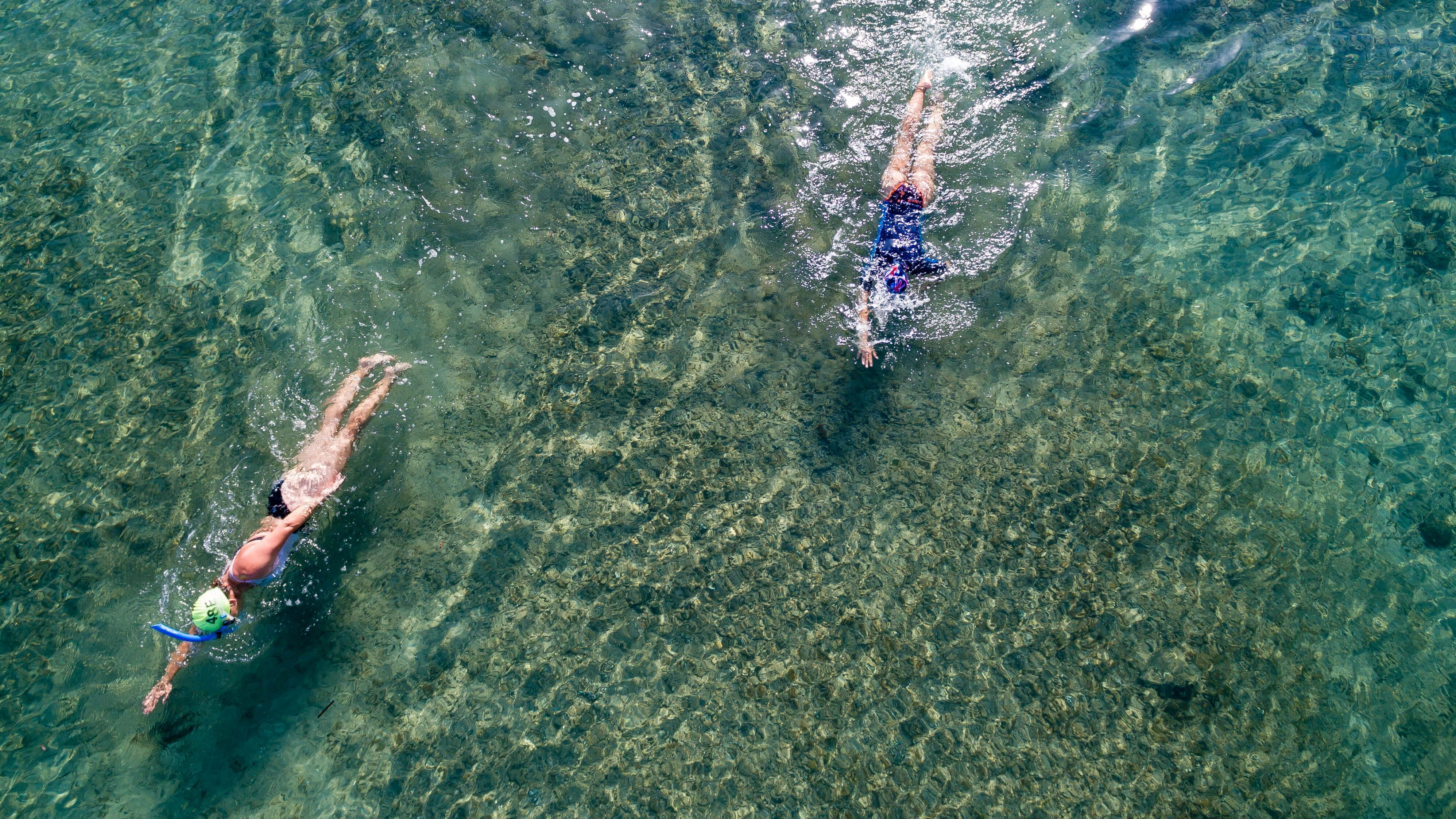 How To Avoid Brain Eating Parasites And Harmful Bacteria While Swimming