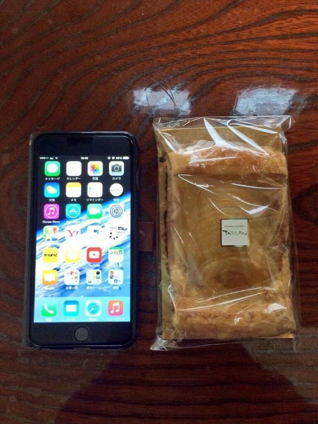 Introducing the Apple iPie 6 Plus