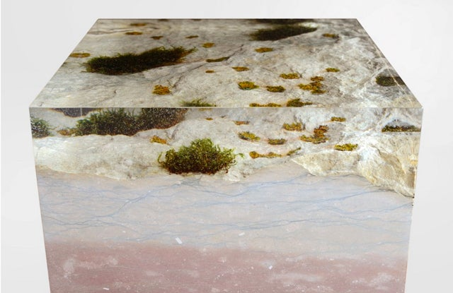 The Natural Moss on This Wooden Bookcase Is Preserved Forever in Resin