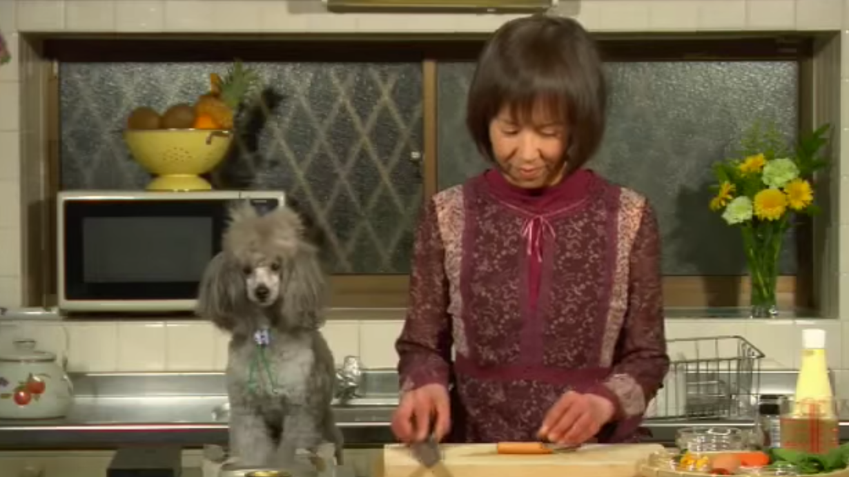 An Internet Dog Chef Goes To Heaven