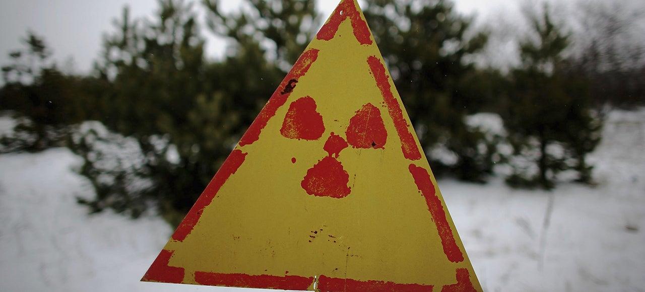 The Woods Around Chernobyl Aren't Decaying