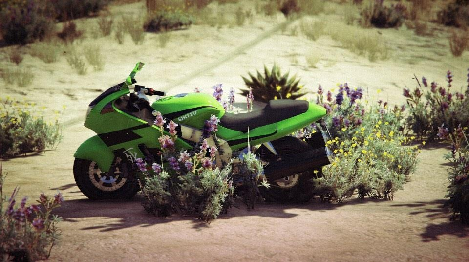 People Are Taking Really Great Pictures in The New Grand Theft Auto V