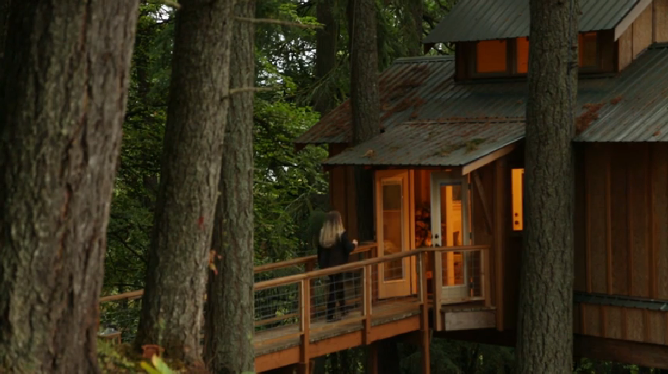 Adults Who Live in Treehouses Aren't as Weird as You Might Think