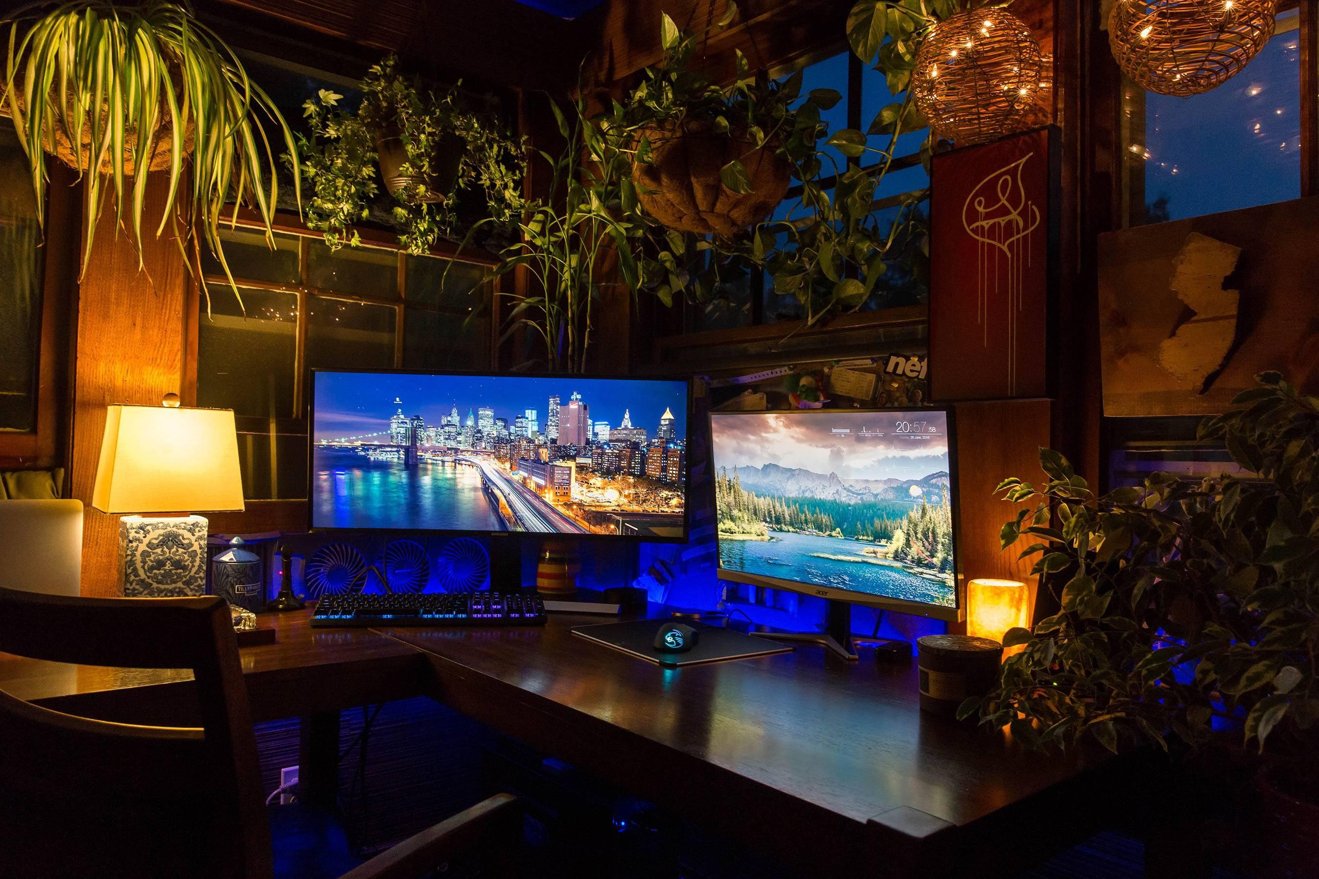 The Jungle Workspace