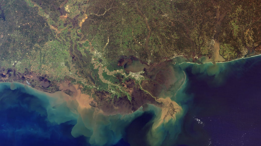 The Gulf Of Mexico's 'Dead Zone' Could Balloon To Over 8,000 Square Miles This Summer
