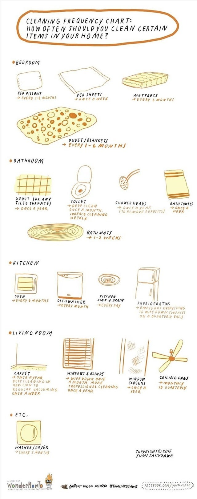 This Infographic Tells You How Often To Clean Household Items