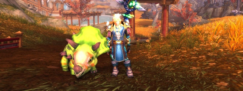 The Rarest World of Warcraft Items