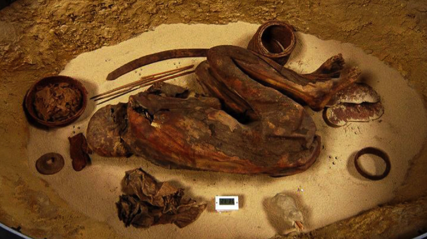 Ancient Egyptians Mastered Mummification Long Before The Time Of Pharaohs