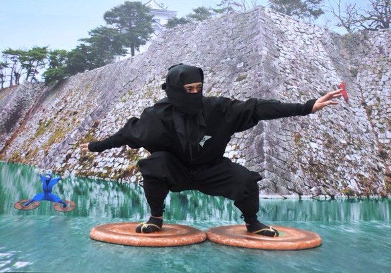 Wrong About Ninja, Again