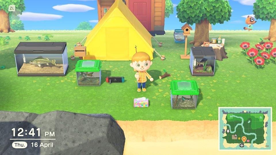 Animal Crossing Is Helping Me Homeschool My Five-Year-Old