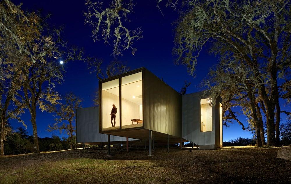 This Tree-Friendly House Sits On Stilts | Gizmodo Australia