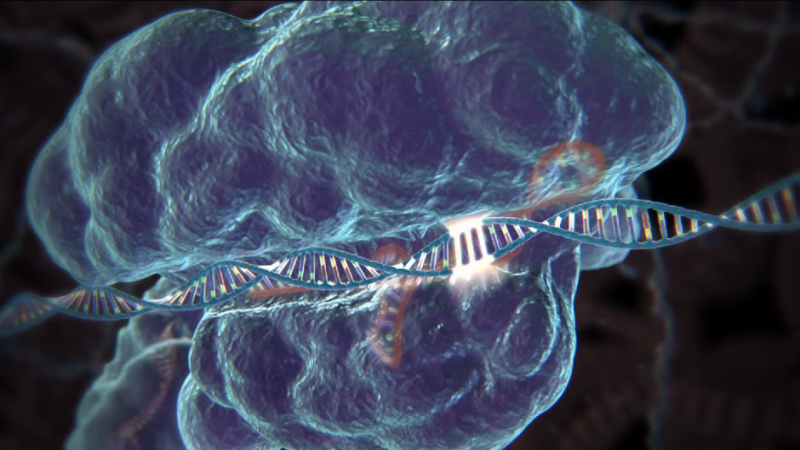 Gene-Editing Tool Approved For Use In Humans