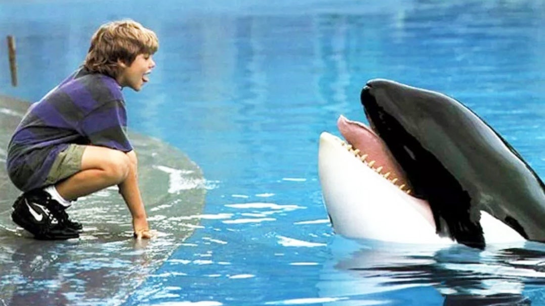 Show Your Kid That 'No Animals Were Harmed' In Popular Movies