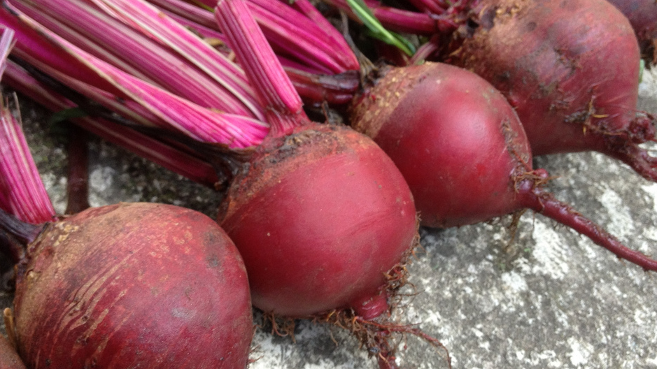 Beet Juice Might Actually Make You Stronger