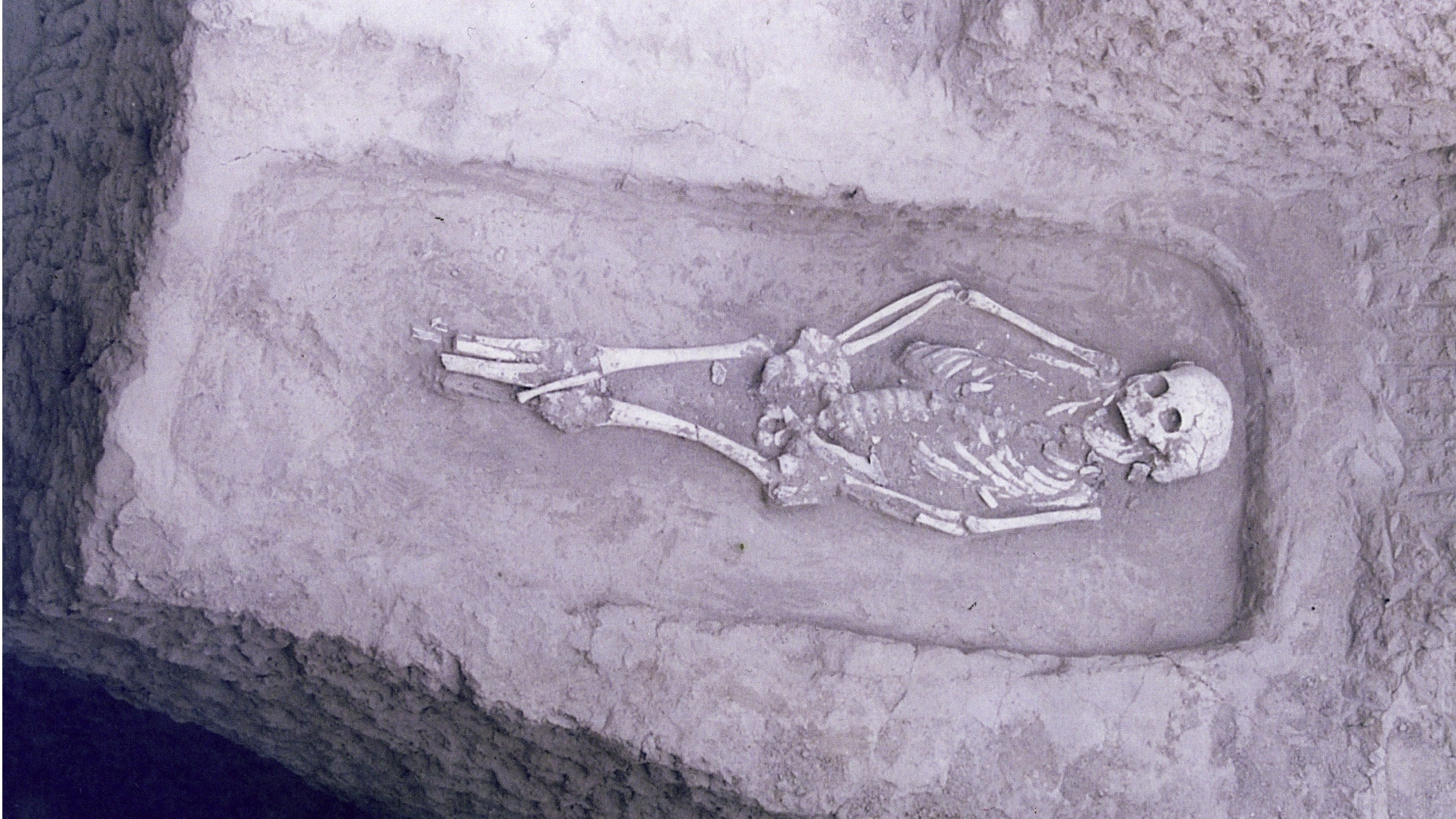 Rare Skeleton Points To Compassion, Care, And Tragedy In Prehistoric China