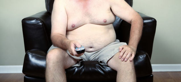 Your Fat Is Fighting Off Infection