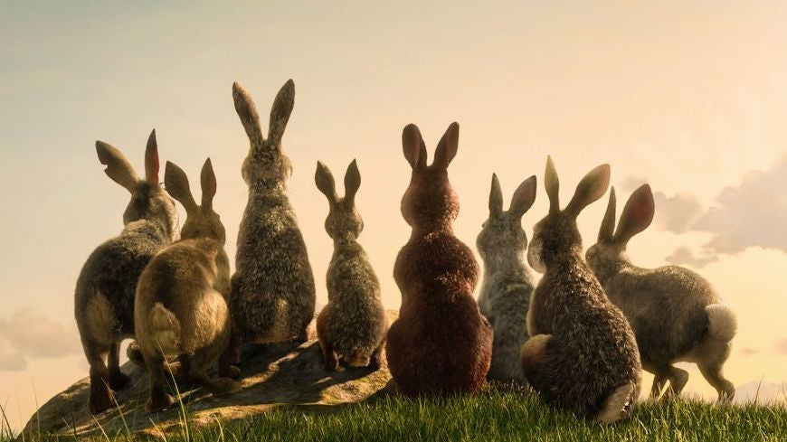 James McAvoy Leads A Star-Studded Rabbit Rebellion In The First Trailer For Watership Down