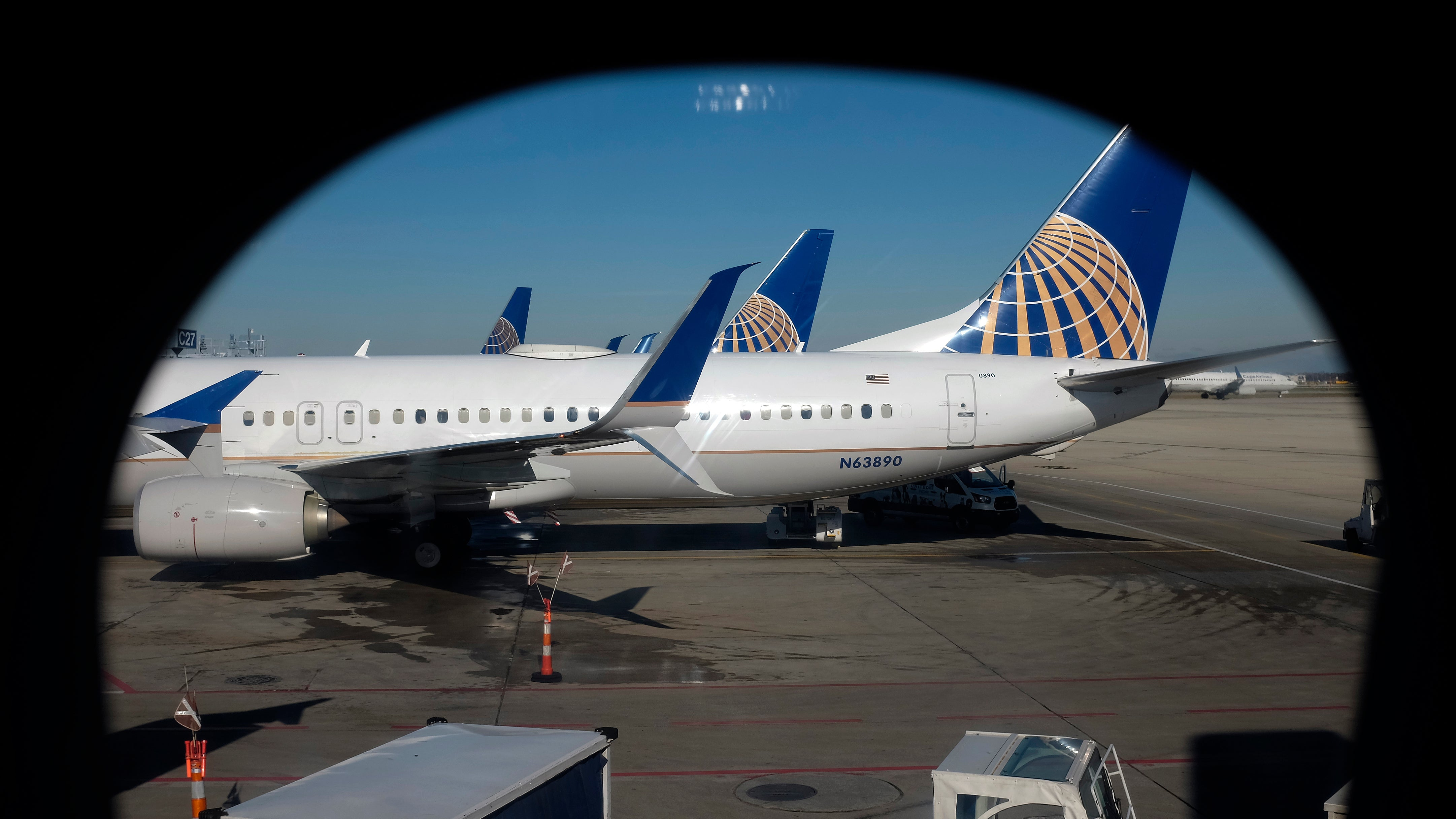 After Puppy Dies In Overhead Bin, United Airlines Mistakenly Sends Different Dog To Japan