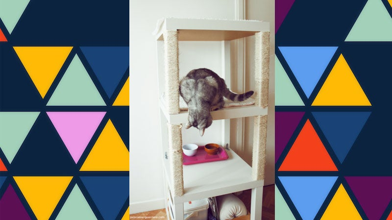 Make Your Own Cheap, Compact Cat Tree from IKEA Tables