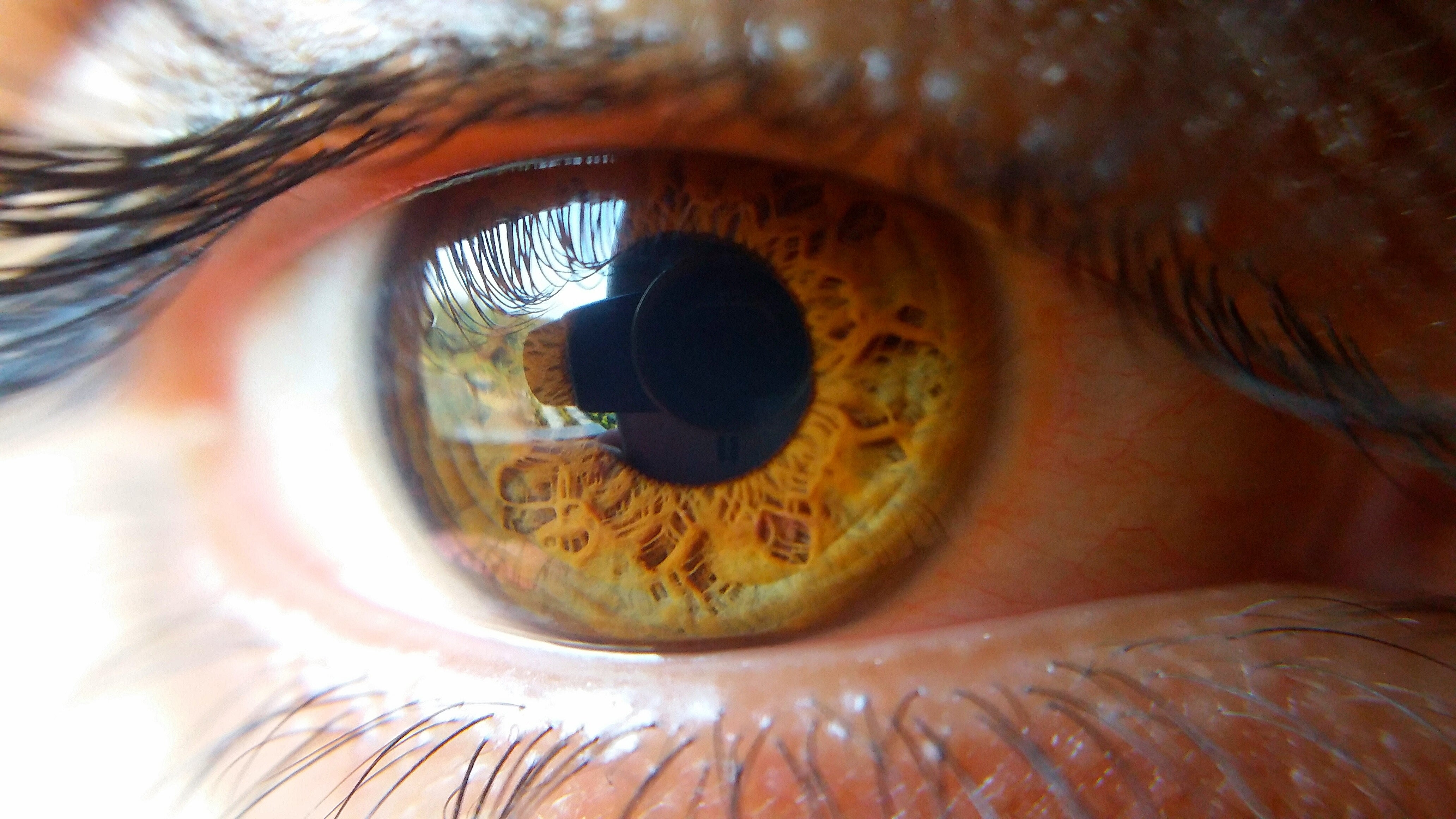 Can You Really Stalk Somebody Through Their Eyeball Reflections?