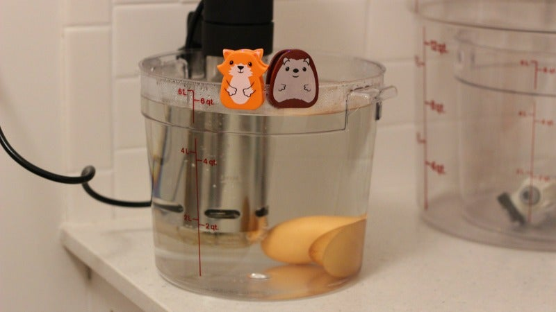 Will It Sous Vide? Totally Safe Raw Cookie Dough