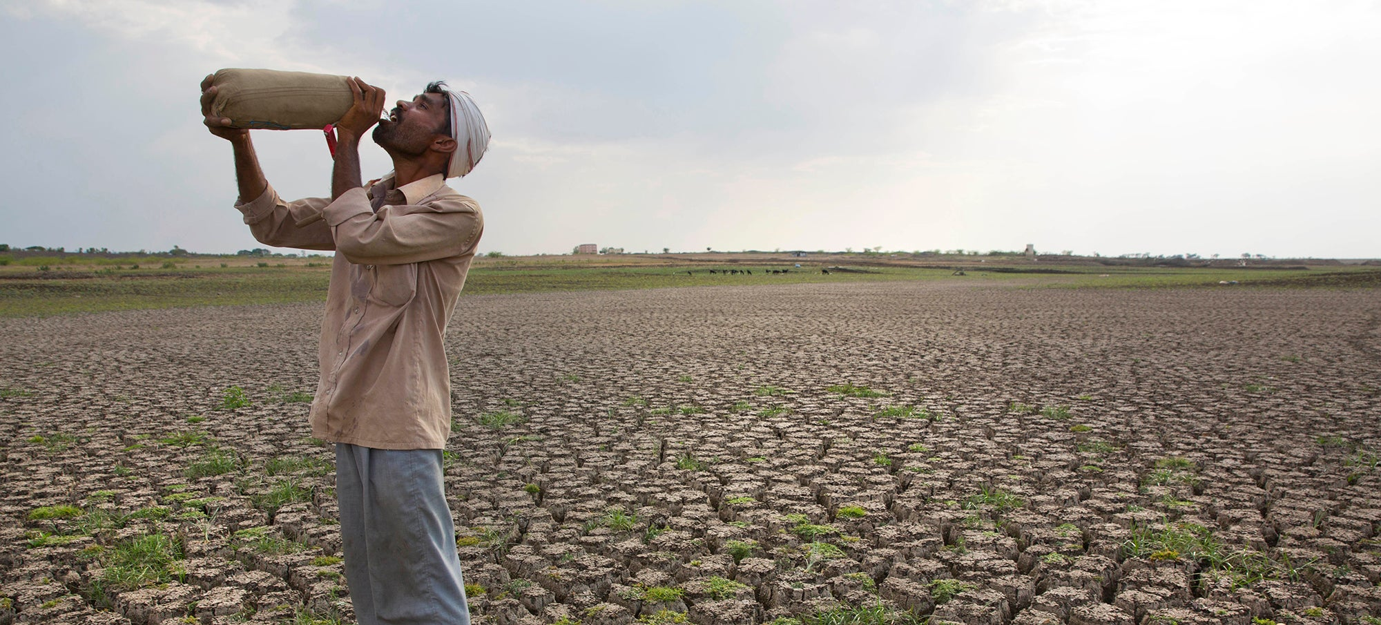 India Experienced Its Hottest Ever Recorded Temperature Of 51C