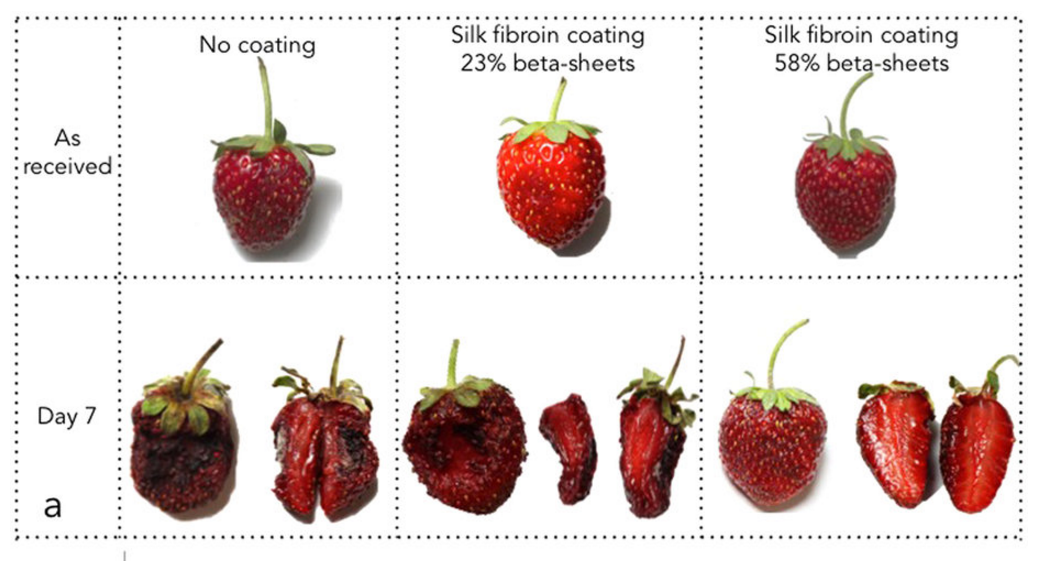 Super-Thin Silk Coating Keeps Fruit Fresh for Over a Week