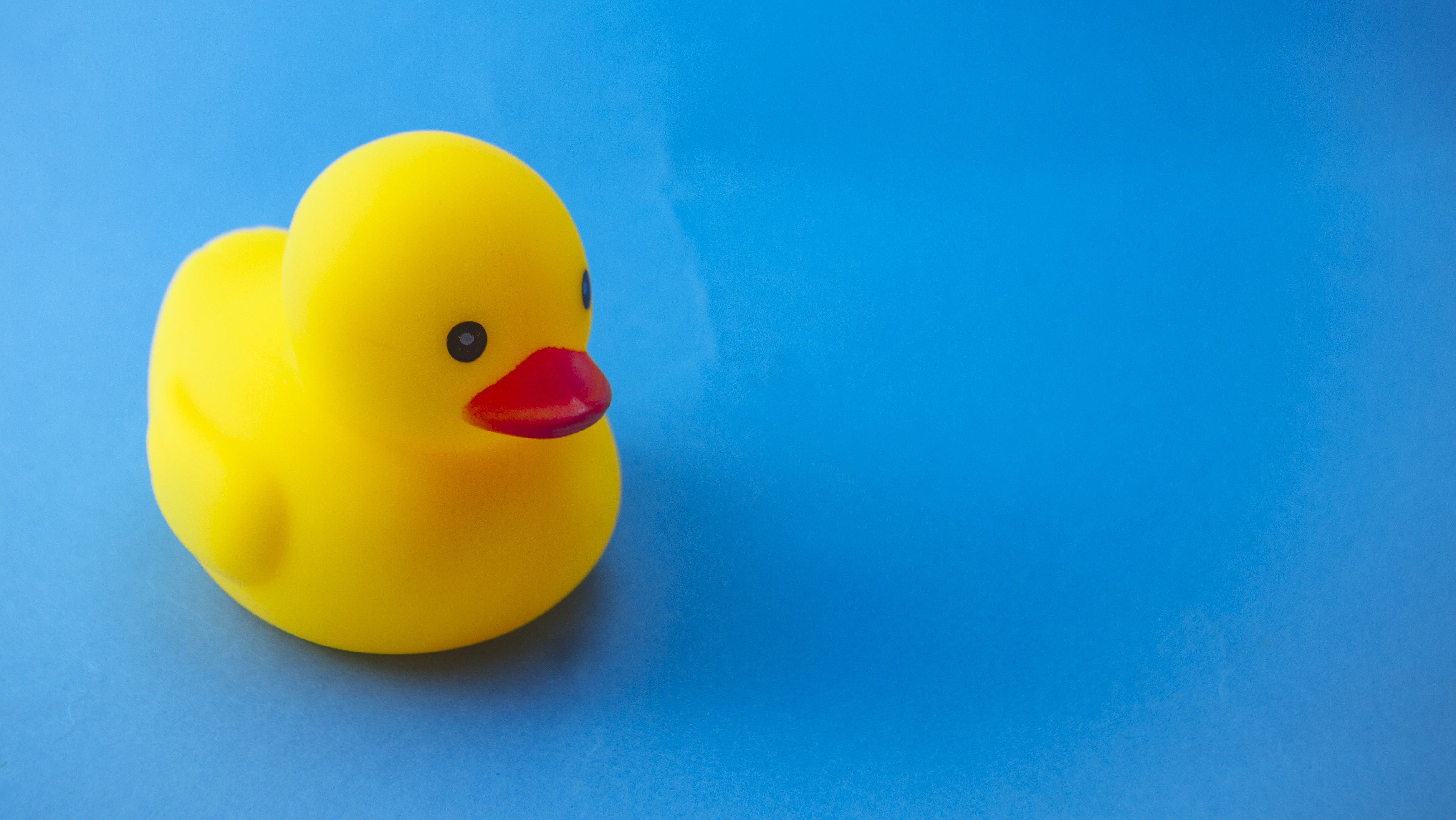 Solve Your Own Problems With The Rubber Duck Trick