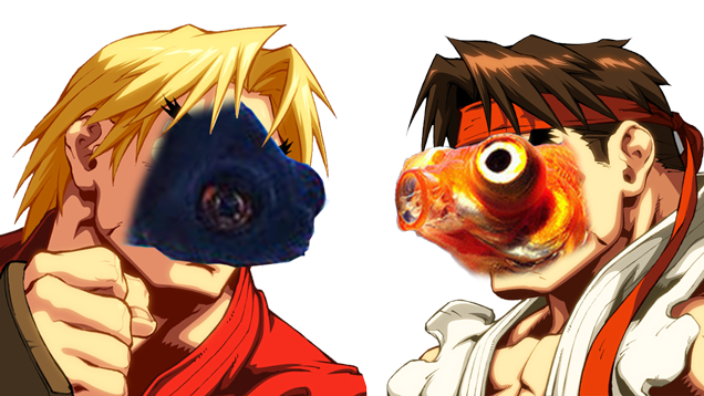Watch These Fish Play Street Fighter