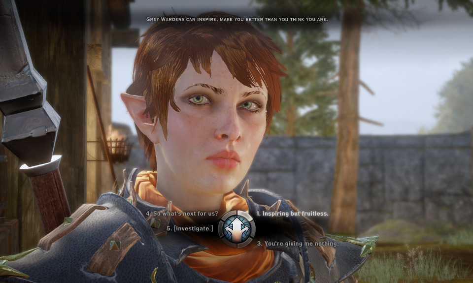 Dragon Age's New Update Took Away My Damn Scars