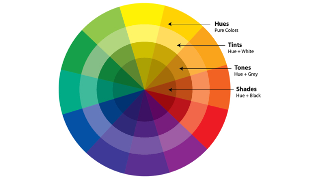 Learn The Basics Of Colour Theory To Know What Looks Good